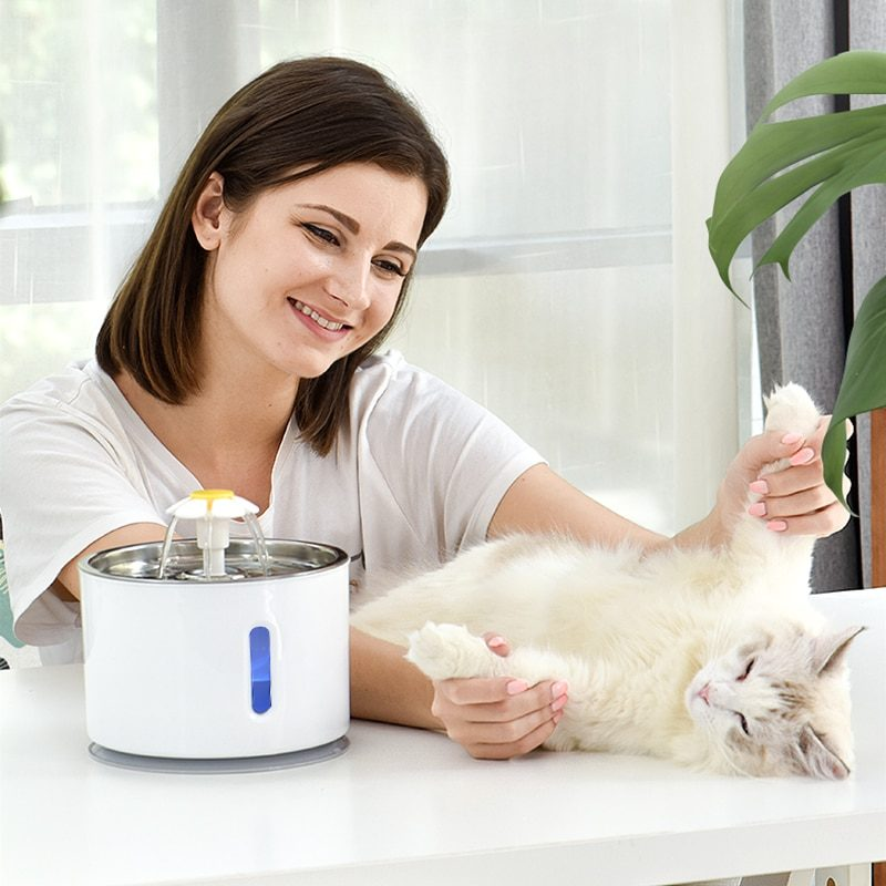 Pet Dog Cat Water Fountain Electric Automatic Water Feeder Dispenser Container LED Water Level Display For Dogs Cats Drink